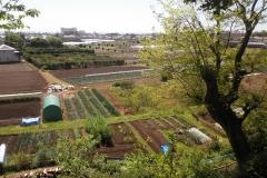 庭から畑が広がります