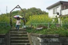 花畑 (2007)